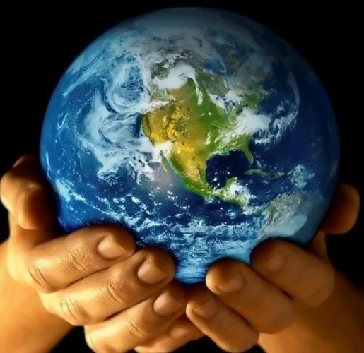 Жизнь влияет на себя и свою планету